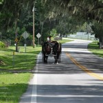 Kimmie on Tours-Caution Horse Crossing